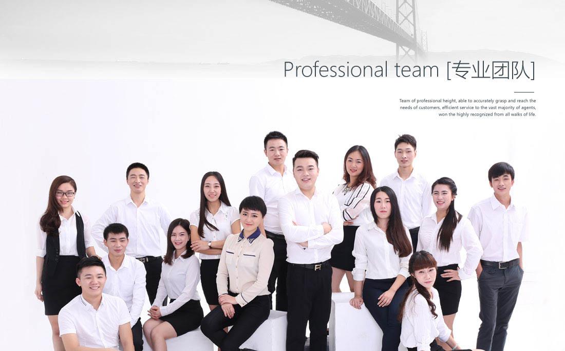 B365集團專業運營團隊